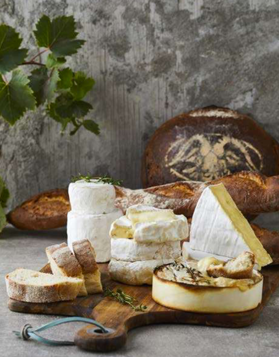 CHEESE-LOVERS-EXPERIENCE-IN-THE-WINELANDS-.jpg