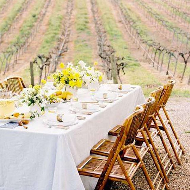 PRIVATE LUNCH IN THE VINEYARDS - A Bespoke Food & Wine Experience ... Enjoy a private, catered lunch or dinner in the vineyards at a beautiful, boutique wine estate. This unique and immersive experience is unrivaled in its ability to highlight the beauty of the South African countryside and its diverse people. ... For reservations see our contact details in our bio or visit www.bigcity.travel ... #southafrica #capetown #wine #foodie #winetasting #bespoke #luxury #luxurytravel #luxurylife #luxurylifestyle #food