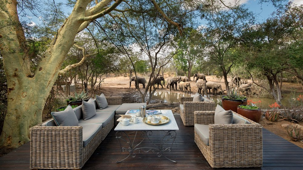 Header-elephants-at-waterhole-at-luxury-andbeyond-ngala-safari-lodge-close-to-kruger-national-park-in-south-africa1.jpg