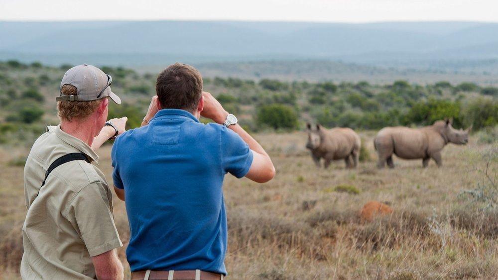 Walking-Safari-Kwandwe-Reserve.jpg