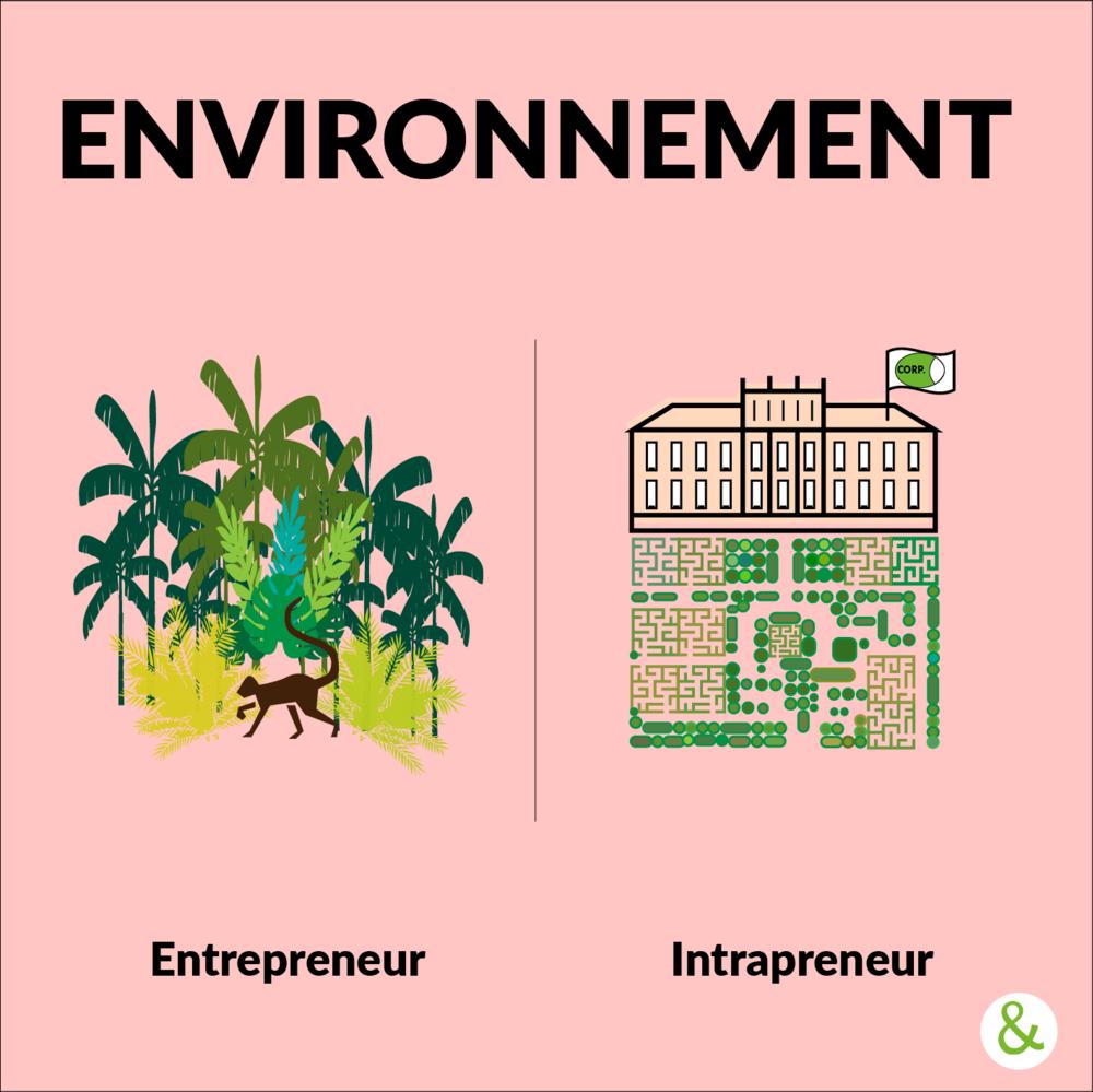 - L'entrepreneur appréhende son environnement comme un aventurier. Agissant souvent seul, il doit se créer des opportunités et un réseau, au sein de la jungle du milieu des affaires, où la concurrence élimine les plus fragiles.L'intrapreneur, quant à lui, joue sur deux plans. Il doit à la fois négocier au sein de son organisation pour convaincre de l'intérêt de son projet, tout en déployant son action vers l'extérieur pour trouver des clients, des partenaires, des fournisseurs, etc. En bon jardinier, il doit affiner son projet en tenant compte des contraintes de l'organisation qui lui pré-existe.