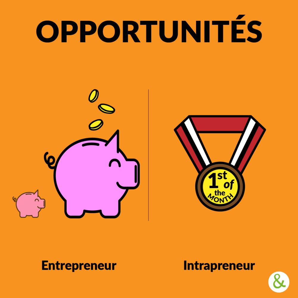 - L'entrepreneur prend avant tout un risque financier (dont la contrepartie est une opportunité de profits personnels). De son côté, l'intrapreneur joue avant tout sa réputation et sa crédibilité au sein de son entreprise. À la différence de l'entrepreneur, il n'aura pas à repartir de zéro en cas d'échec, mais verra sa position dans l'organisation fortement remise en cause. En cas de succès, la reconnaissance qu'il peut acquérir pourra lui offrir une évolution de carrière intéressante ou un poids plus important dans son organisation.