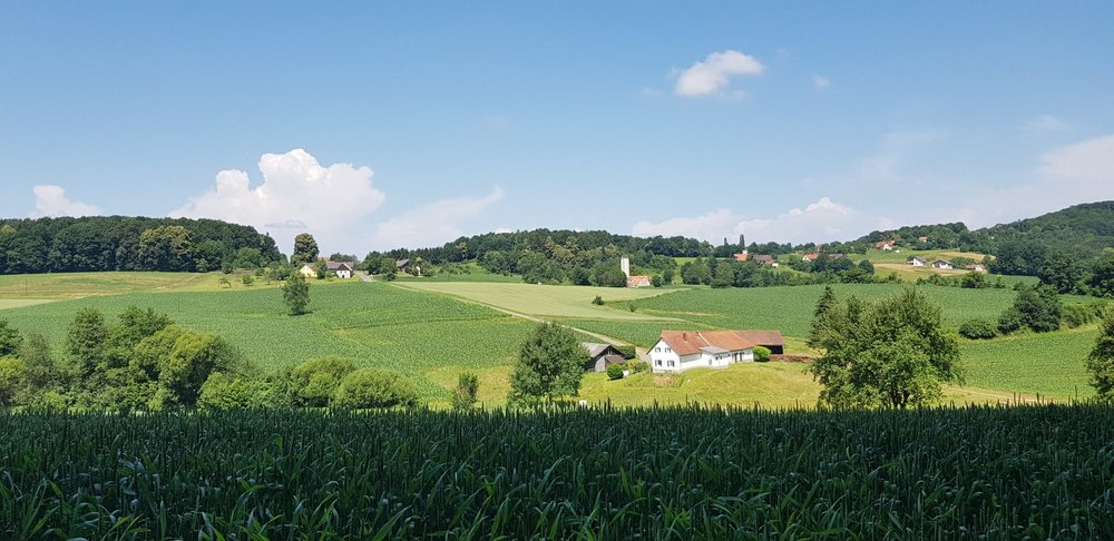 Ewald Koch - Gossendorf 44.jpg