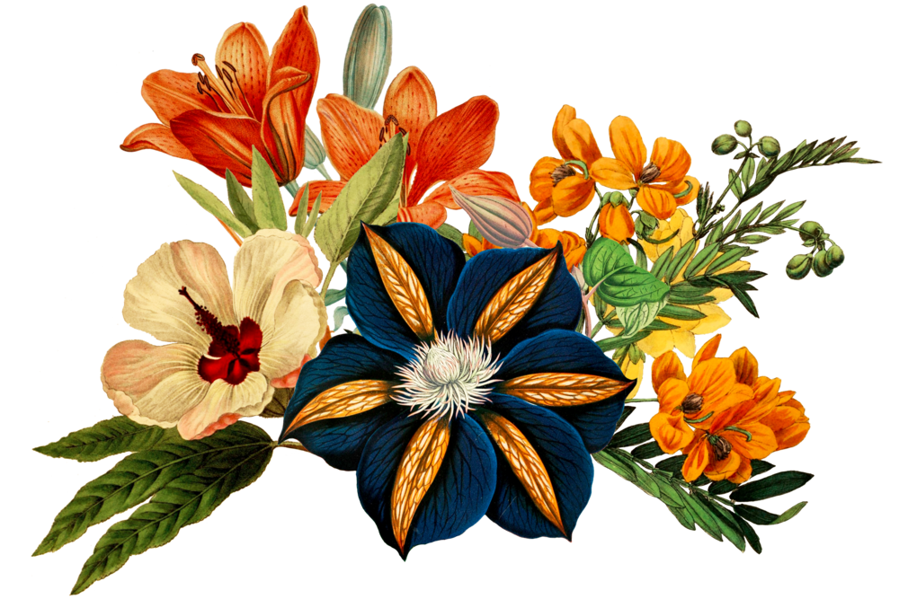 Website Bouquet edited.png