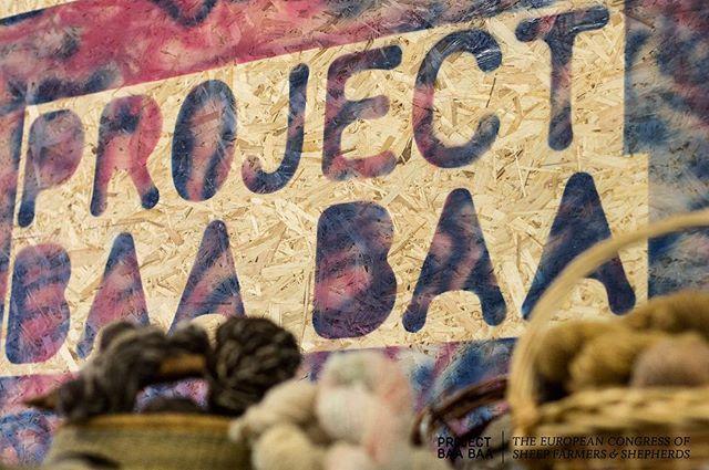 ❤️ #projectbaabaa #galway2020 @galway2020
