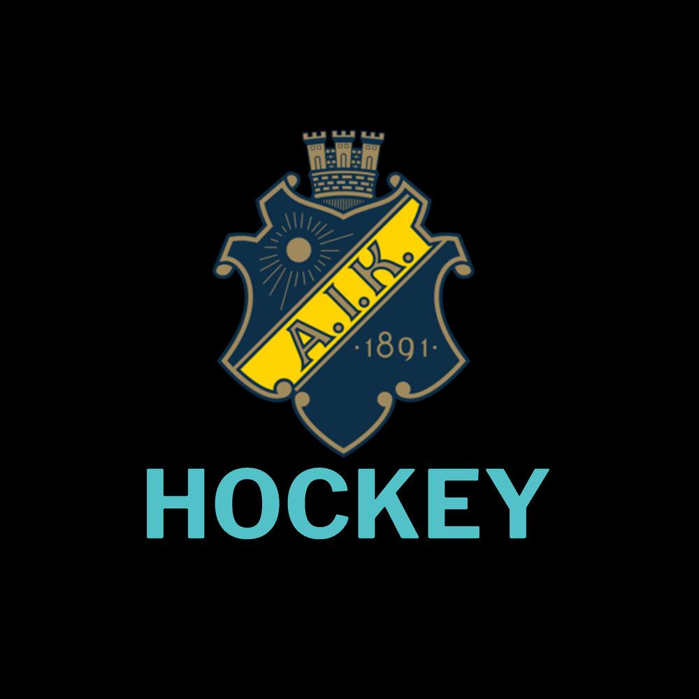 AIK hockey     Träffa spelarna (2018/2019)