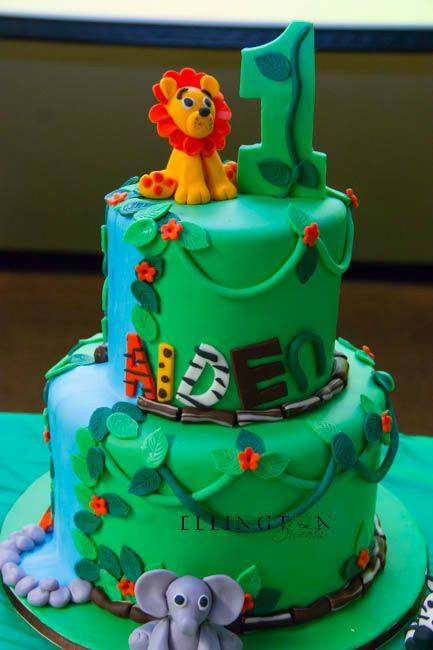 Aiden_s 1st Birthday Cake.jpg