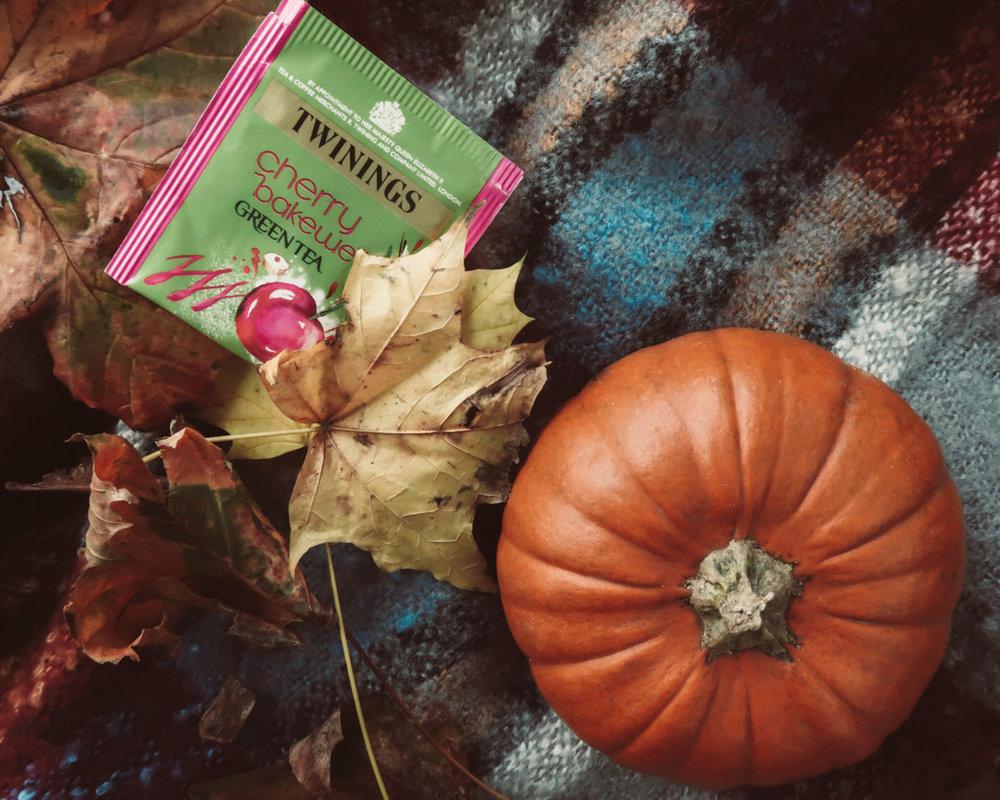Lucy Alice B Blog Quick Shoot - Pimpkin Spice