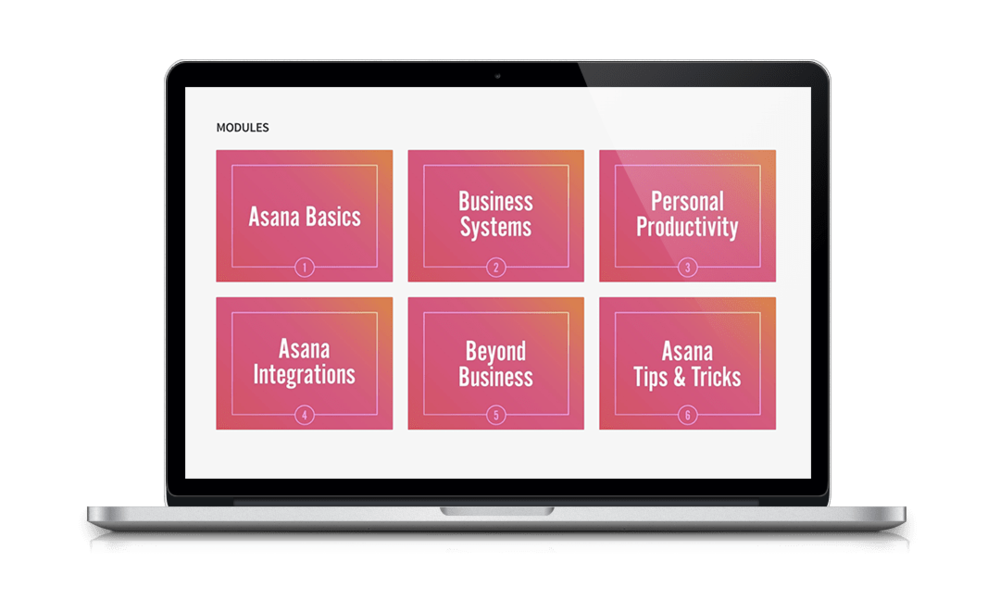 Asana for Small Business