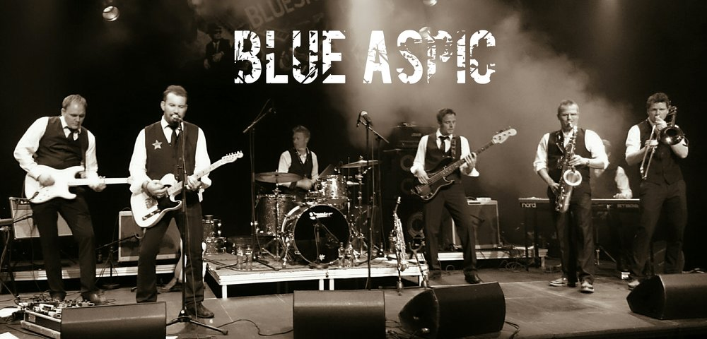 BlueAspicPlakat2014 (1).jpg
