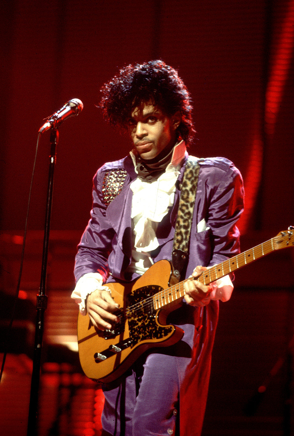 Prince_08.jpg