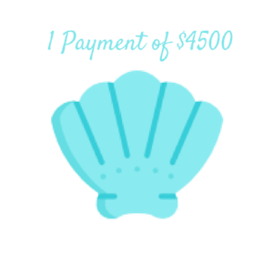 1 Payment of $4500.png
