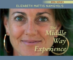 The_Middle_Way_Experience_-_Elizabeth_Mattis_Namgyel.jpg