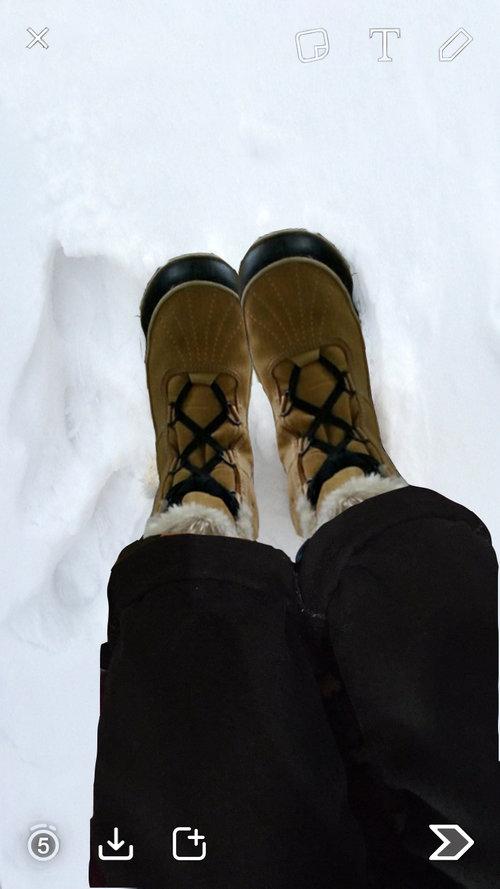 snow+mock.jpg