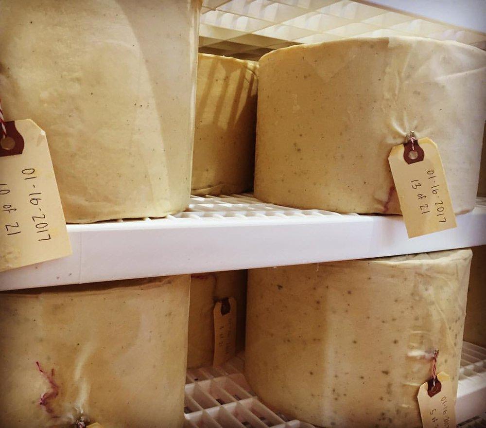 lucky-linda-cheesemaker.jpg