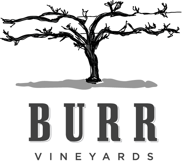 burr-vineyard-logo.png