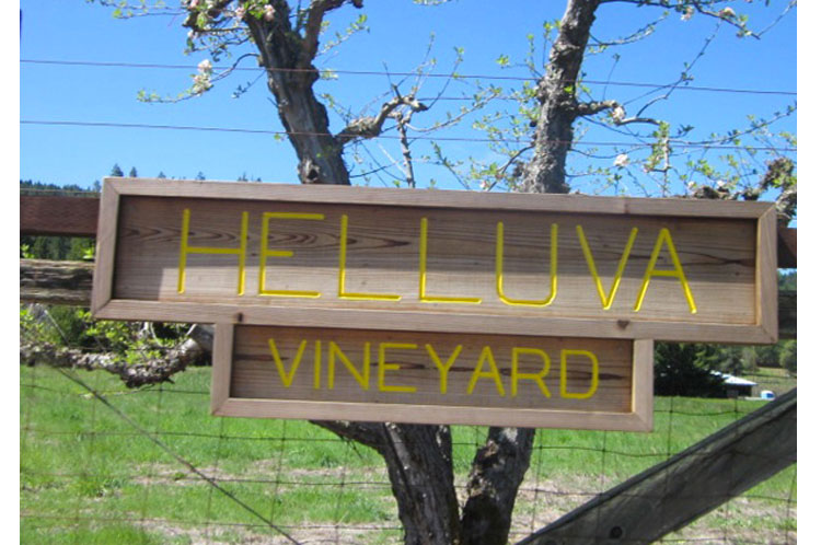 Helluva-Vineyard SIGN.jpg