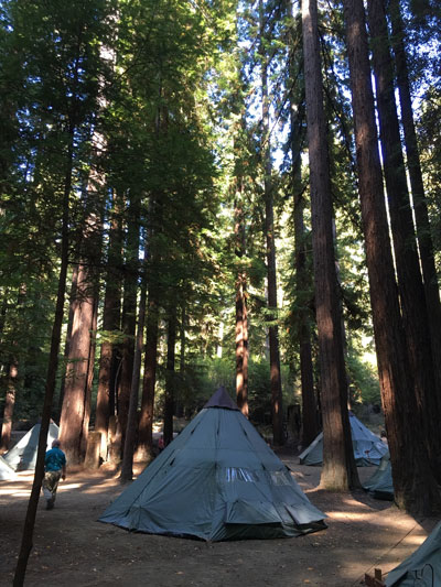 PHOTO_TEEPEE-in-Redwoods.jpg