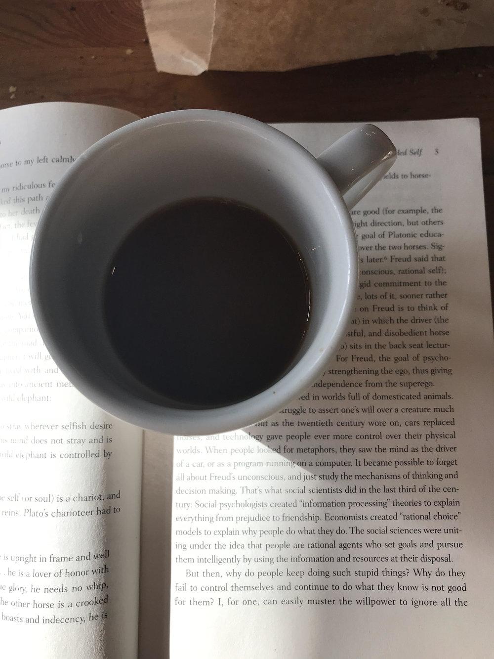 inspo reading.jpg