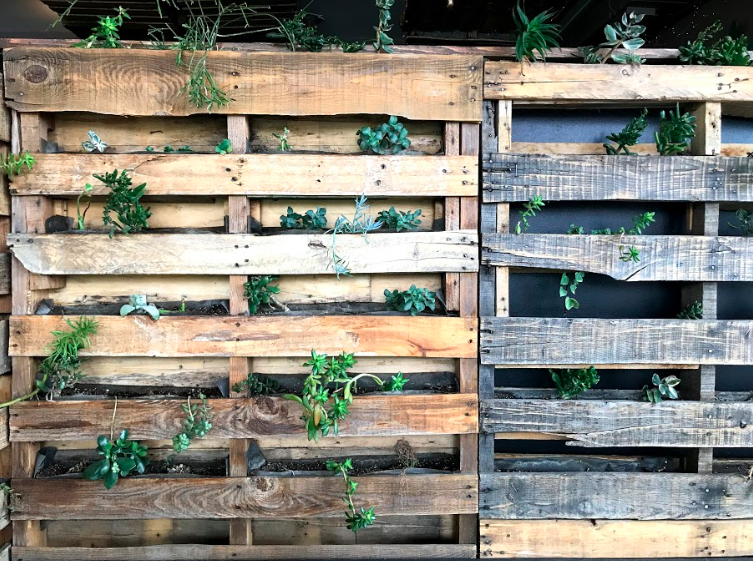 The rough, hardy texture of the wooden pallets complement the organic nature of the greenery for a wonderful alignment.  Photo via: Sarina's Photography