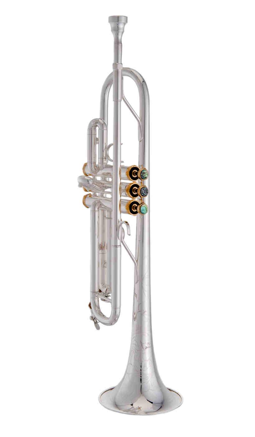 Trumpet TP608B.JPG