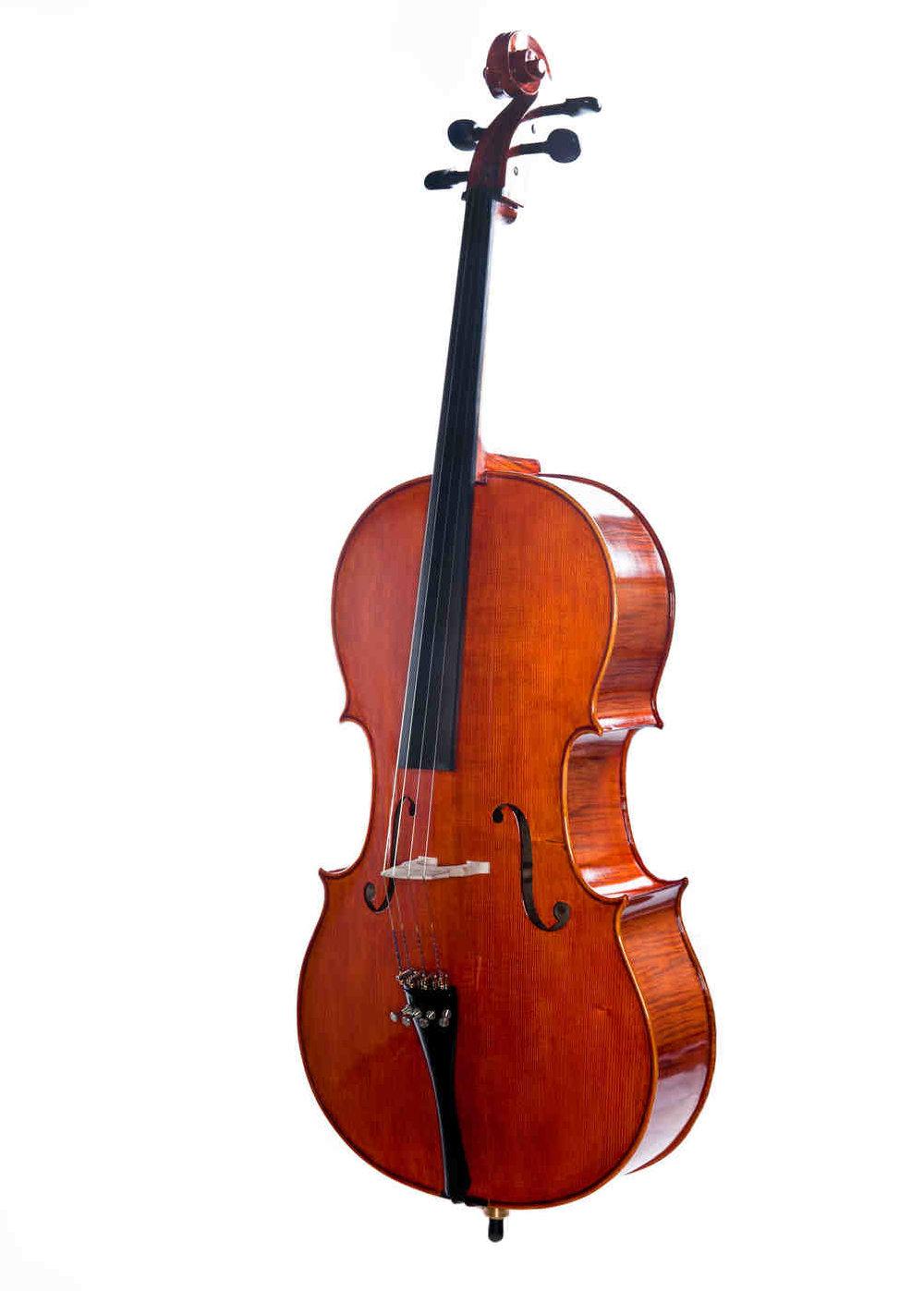 Erwin Otto Cello 8022CL.JPG