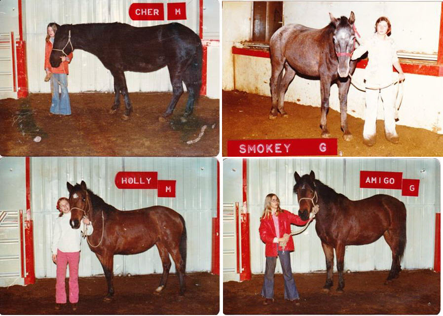 A handful of the cherished Westernaires rental string horses from the mid-1970s era.