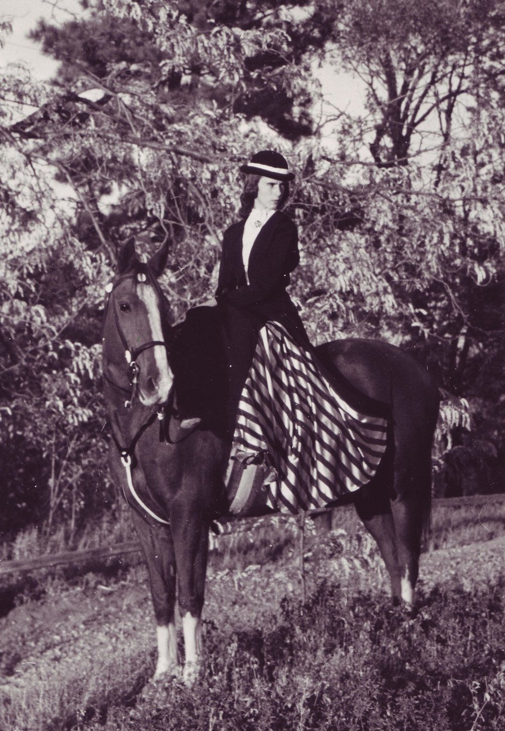 """Marlene Scobey on """"Queenie"""", the First Lady of the Golden Girls Sidesaddle Review. Marlene was the first rider in Westernaires to earn the officer rank of Major."""