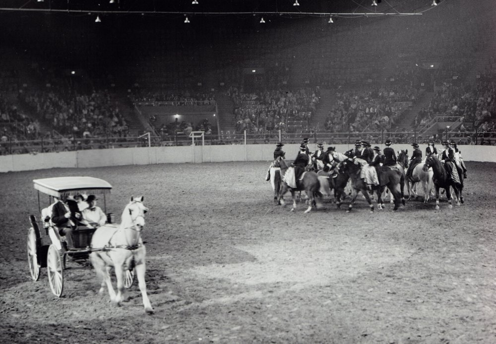 """The feature of the Golden Sidesaddle Review act was a salute to the """"surrey with the fringe on top""""."""