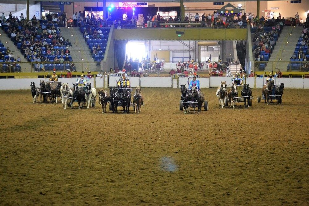 Westernaires Charioteers performing at the 2016 Westernaires Horsecapades Annual Show.  Photo courtesy of  Palmer Photography .