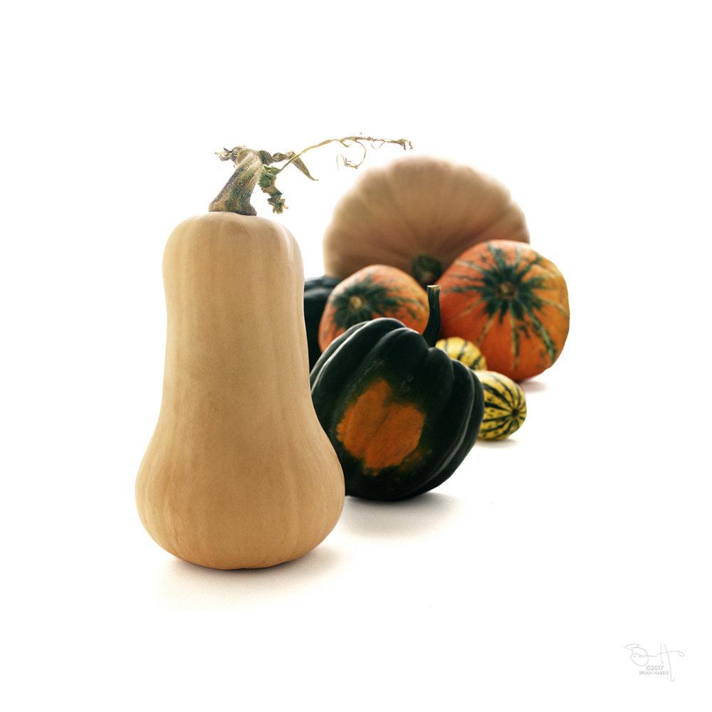 Pumpkins+1 web©.jpg