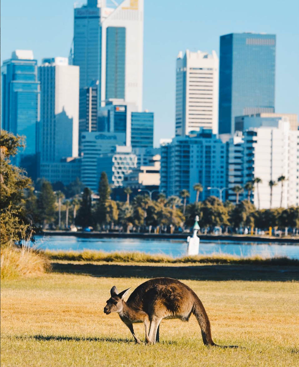 AUSTRALIA COMING SOON! -