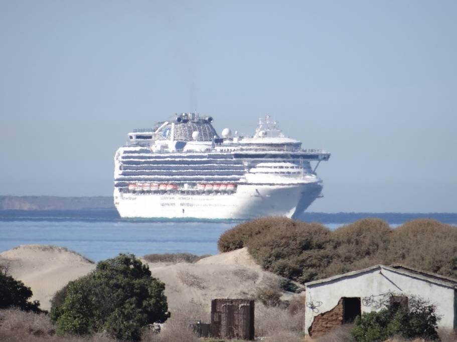 Cruise Watch.