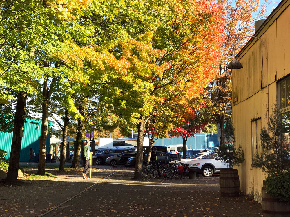 granville island vancouver review