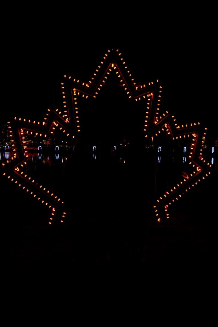 lights at lafarge vancouver