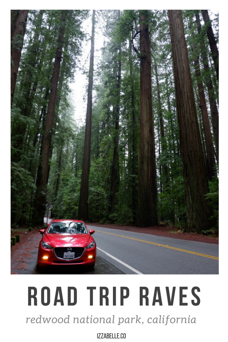 road trip redwood national park.png