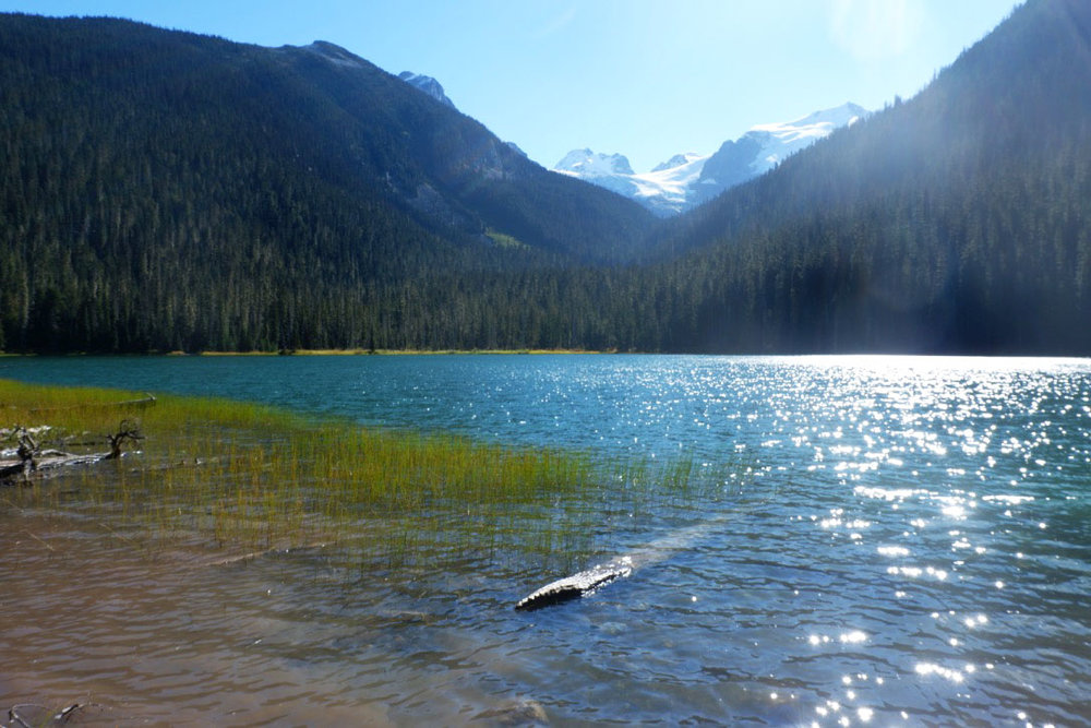 The Lower Joffre Lake is only 10-15 minutes from the trailhead. And it only gets better from here…