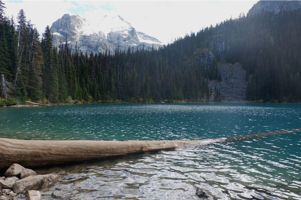 Another iconic Joffre Lakes image - all you need to do to snap a photo on the log is to queue up. I think I waited for half an hour just to stand on that darn log for less than five minutes. Oh well, I guess I can say I've been there, done that :x