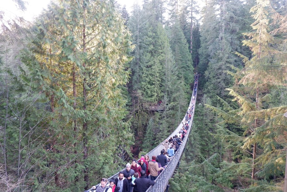 capilano suspension bridge vancouver