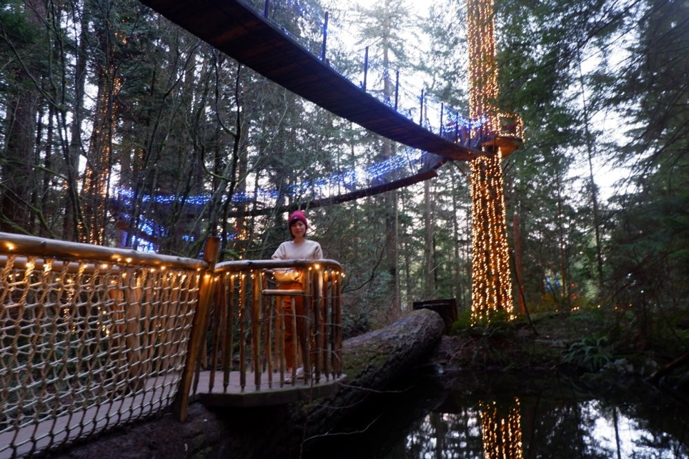 capilano suspension bridge review
