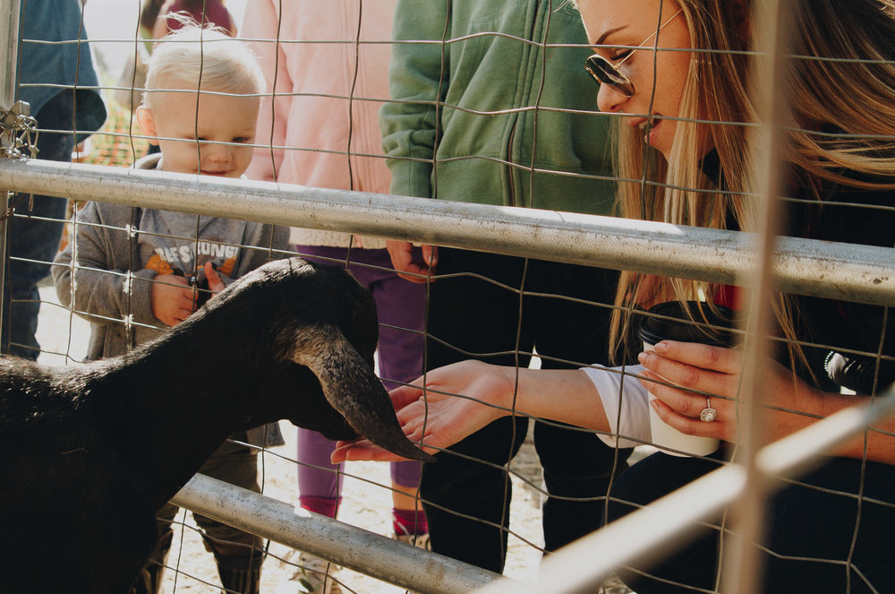 petting-zoos-medford-oregon