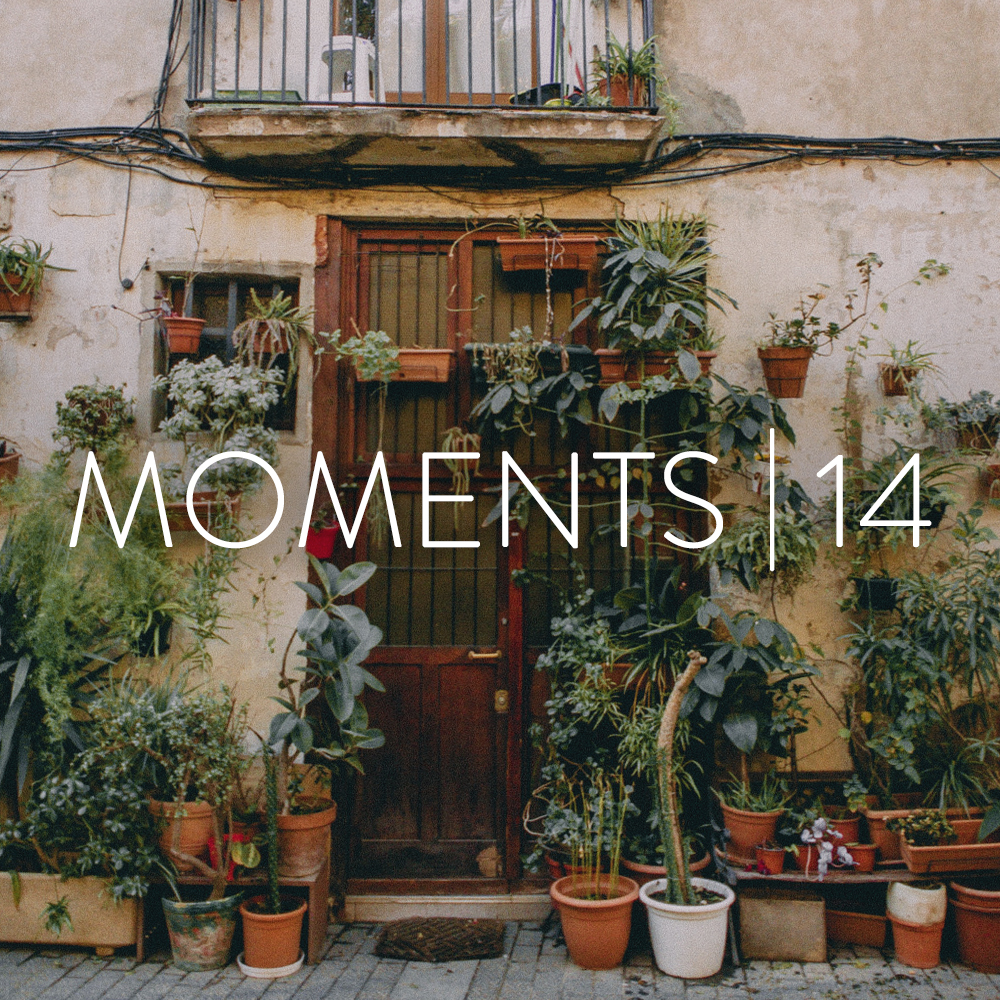 moments_14.jpg