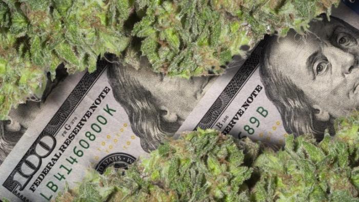 shutterstock_cannabis-768x432.jpg