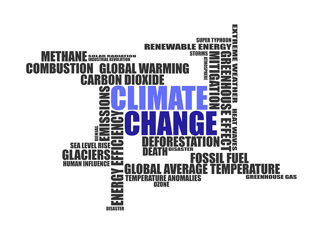 climate-change-1908381_640.png