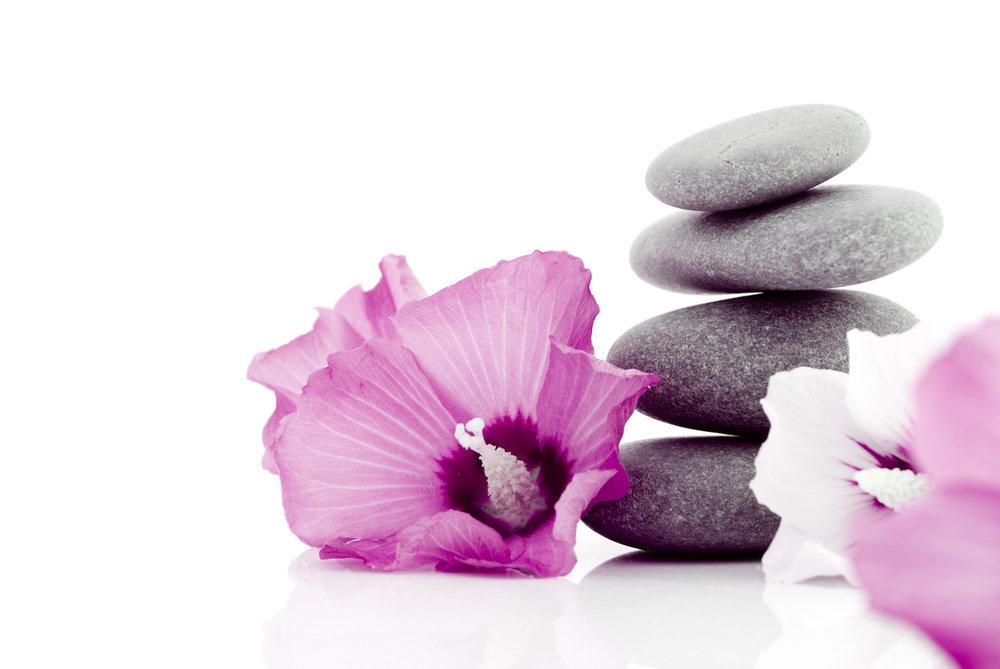 rocks-flower.jpeg