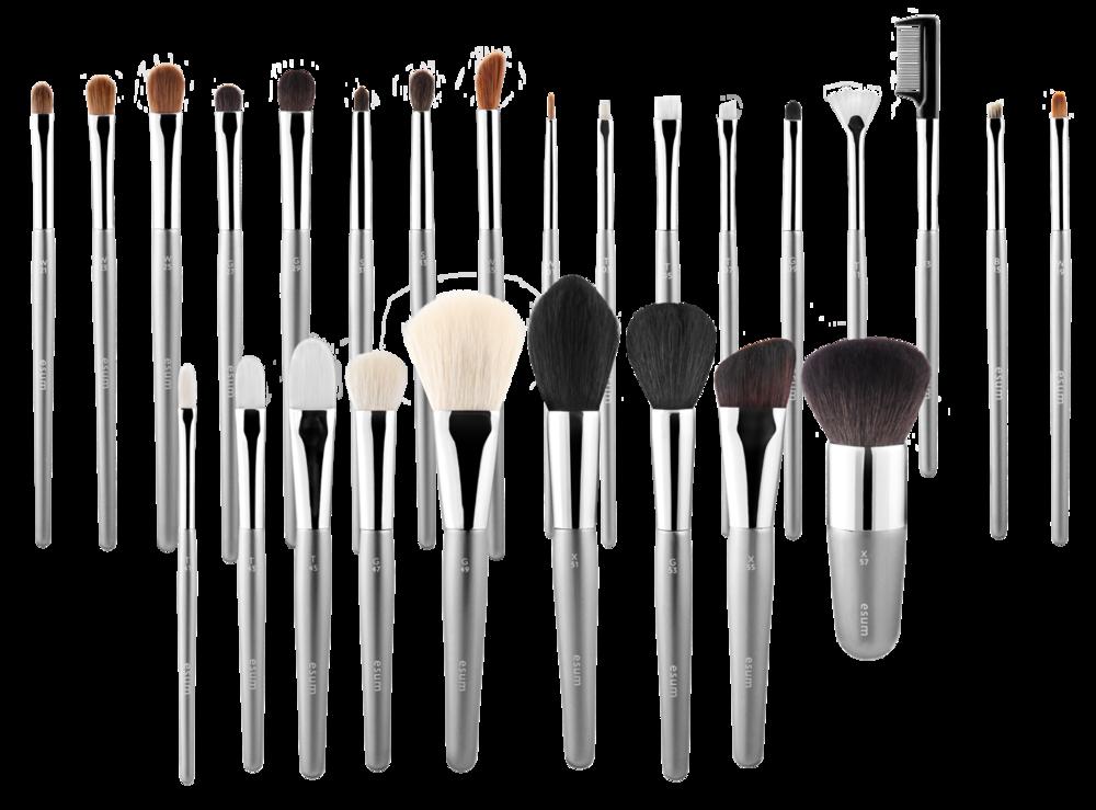 ESUM Professional Brush Collection | 2013