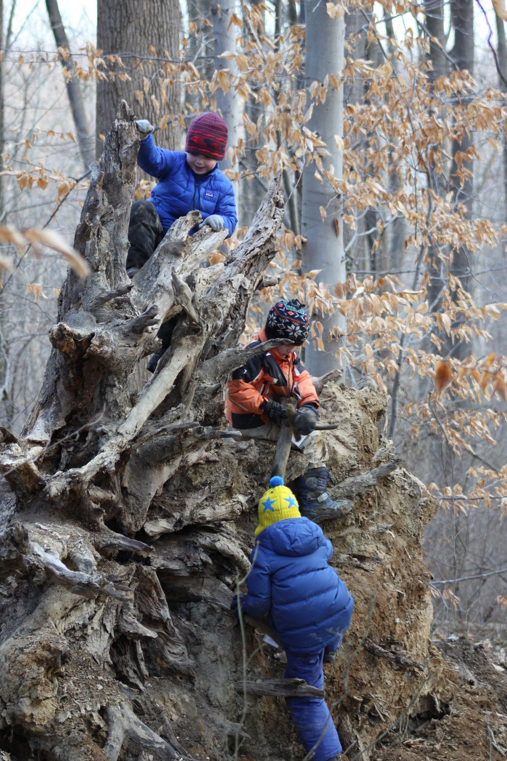 Winter outdoors programs for kids