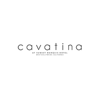 cavatina logo.png