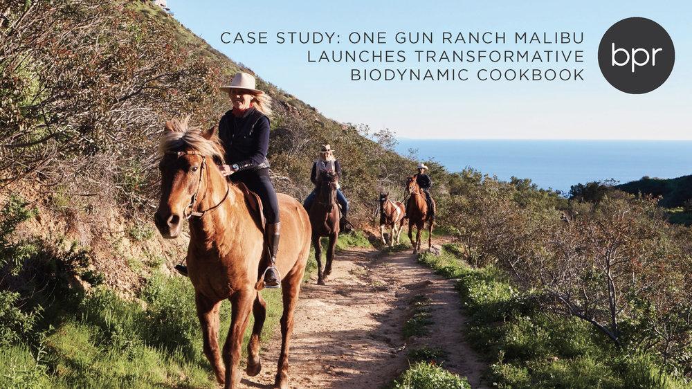 One Gun Ranch Case Study_Page_1.jpg