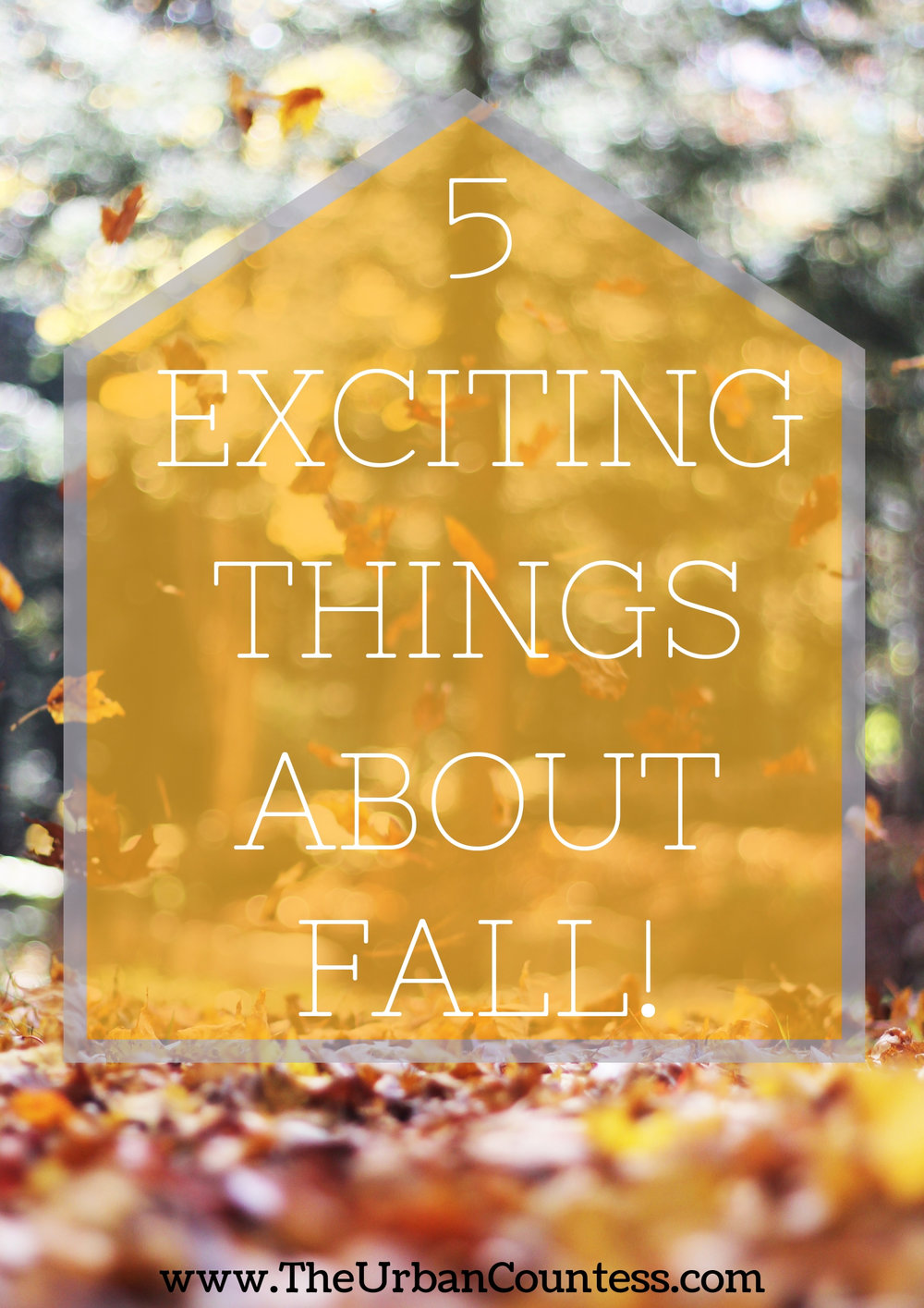 Noticing the seasons is a part of high vibe living. I'm sharing 5 things to get excited about for Fall!! | www.TheUrbanCountess.com